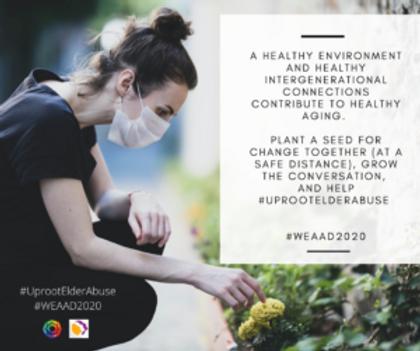 HealthyAging_GardeningwithMask-300x251.p