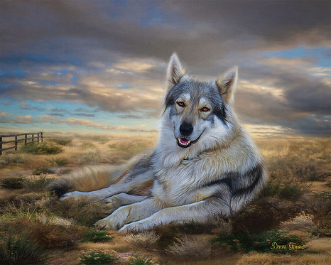 Desert Wolf Wildlife Digital Oil Painting