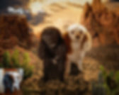 Desert Oasis Custom Pet Portrait Paintin