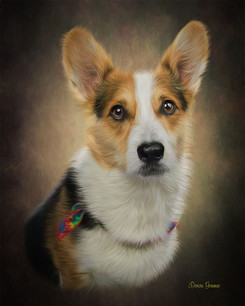 Spring Bloom Custom Pet Portrait Paintin