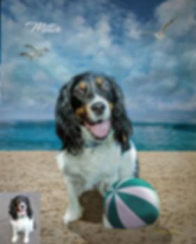 Sandy Beach Custom Digital Oil Pet Paint