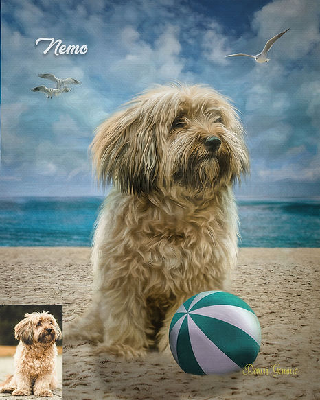 Sandy Beach Custom Digital Oil Pet Paint