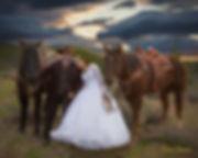 Custom Commission Wedding Portrait