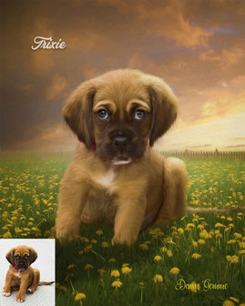 Dandelions Galore Custom Pet Portrait Painting