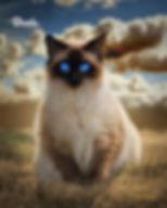 Autumn Storm Custom Pet Painting