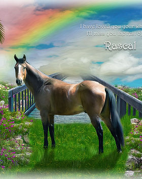 Sky Rainbow Bridge Horse Memorial Digita