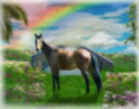 Sky Rainbow Bridge Horse Memorial Digita