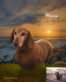Shoreline Sunset Custom Pet Portrait Painting