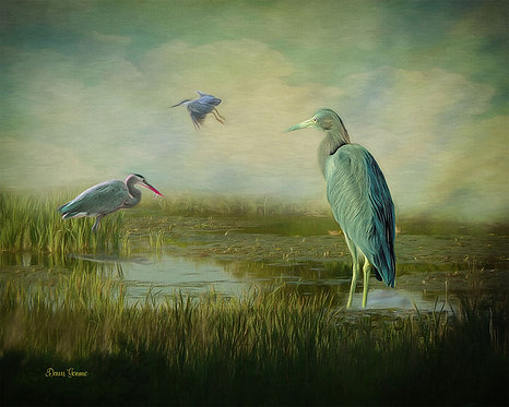 Blue Heron Meeting Place Wildlife Digital Oil Painting