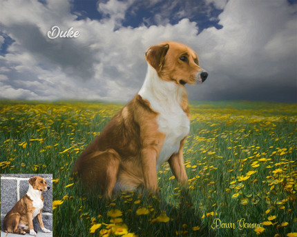 Summer Place Custom Pet Portrait Painting