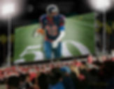 Custom Novelty Billboard Sport Portraits