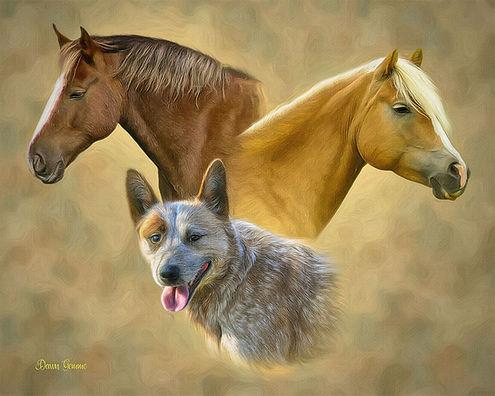 Trilogy Dog Horse Cat Custom Pet Portrai