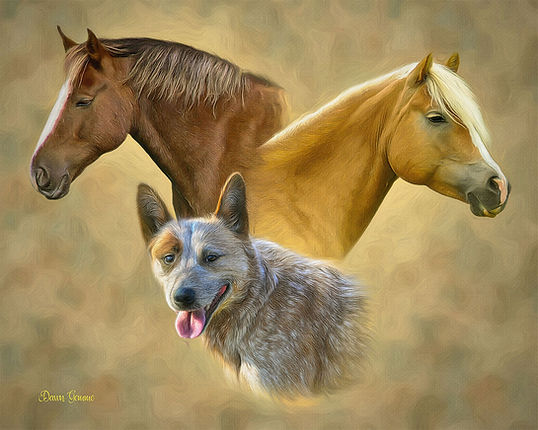 Trilogy Dog Horse Cat Custom Pet Portrai