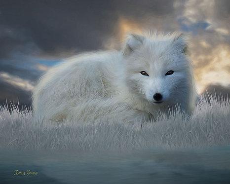 Arctic Fox Wildlife Digital Oil Painting
