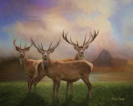 Deer Buck Pack Wildlife Digital Oil Painting