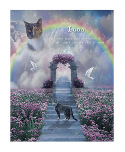 Personalized Rainbow Bridge Cat Memorial Portrait