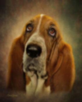 Early Autumn Custom Pet Portrait Paintin