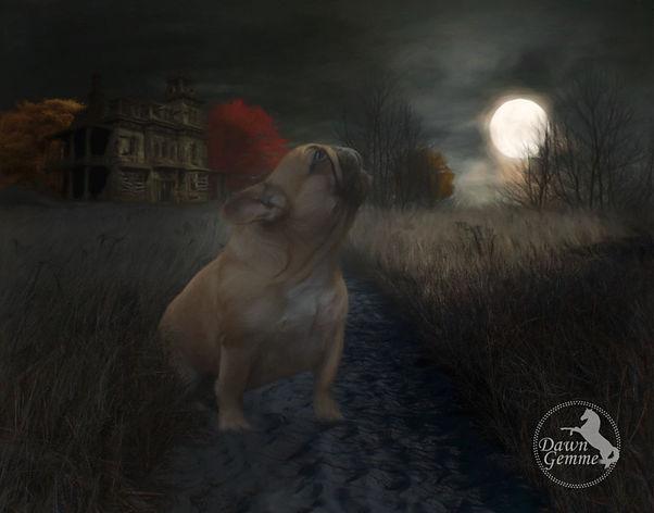 Custom Digitial Oil Dog Portrait