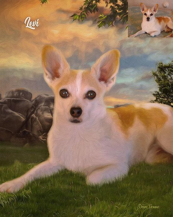 Peach Sunrise Custom Pet Portrait