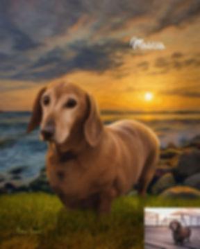 Shoreline Sunset Custom Digital Oil Pet