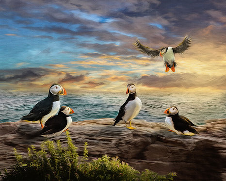 Puffin Seaside Party Digital Oil Wildlife Painting