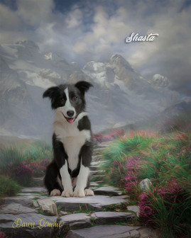 Mountain Path Custom Pet Portrait Painting