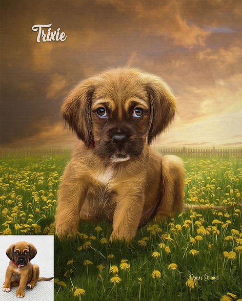 Dandelions Galore Custom Digital Oil Pet