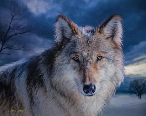 Snow Wolf At Dusk Wildlife Digital Oil Painting