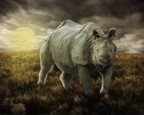 Rhino and Desert Sunset Digital Oil Wildlife Painting
