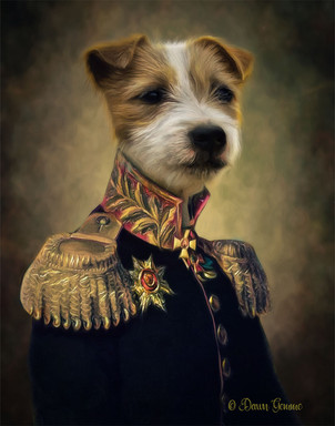 Military Office Period Style Custom Pet Portrait Painting