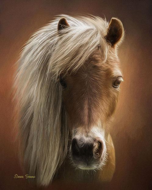 Miniature Horse Digital Oil Painting Portrait