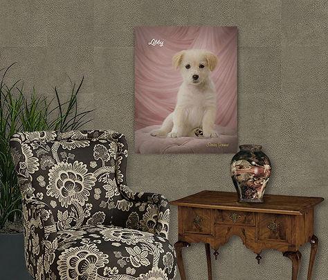 Layered Satin Studio Style Custom Pet Po