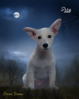 Moonlit Valley Custom Pet Portrait Painting