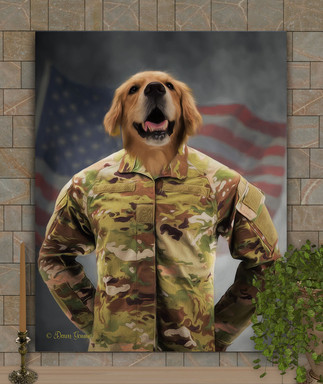 Army Costume Costume Pet Portrait Painting