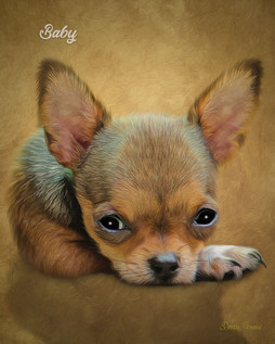 Watercolor Gold Custom Pet Portrait Painting