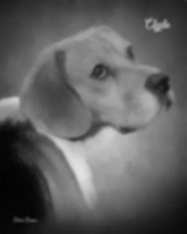 Custom Digital Charcoal Pet Portrait