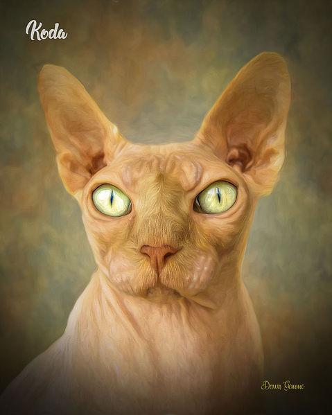 Granite Custom Digital Oil Pet Portrait
