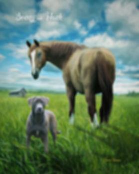 Summer Haven Custom Pet Portrait Paintin