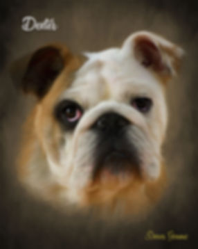 Custom Canvas Digital Oils Pet Portrait