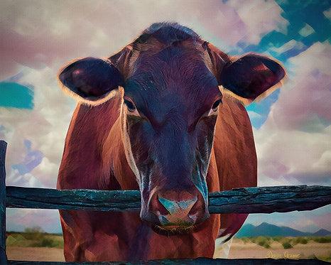 Inquisitive Desert Cow Digital Oil Animal Painting