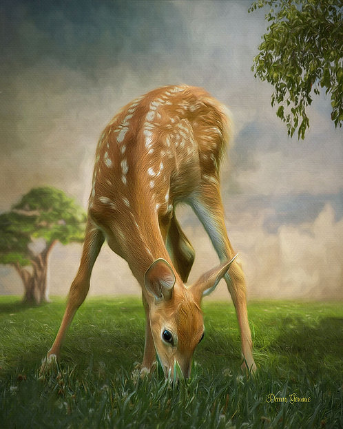 Sweet Young Fawn Wildlife Digital Oil Painting