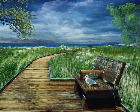 A Quiet Place Riverside Park Bench Digital Oil Painting