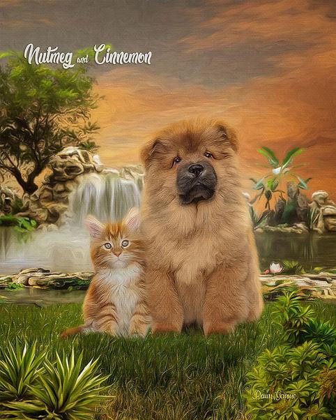 Waterfalls Paradise Custom Pet Portrait