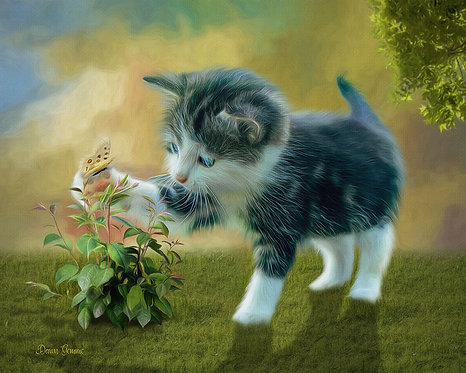 Adorable Kitten and Butterfly Digital Oil Painting