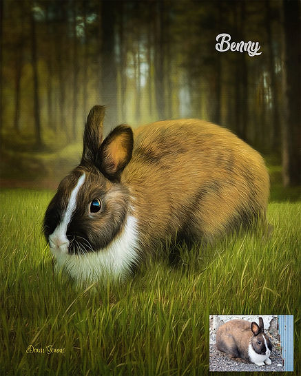 Sunny Forest Clearing Custom Oils Rabbit