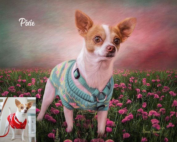 Pink Poppy Field Custom Digital Oils Pet