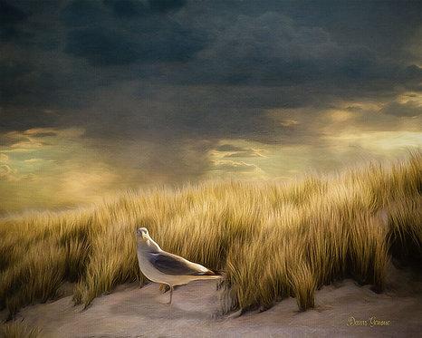 Stormy Beach Dunes Wildlife Digital Oil Painting