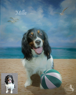 Sandy Beach Custom Pet Portrait Painting