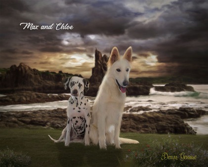 Scottish Cliffs Custom Pet Portrait Painting