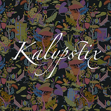kalypstix.png